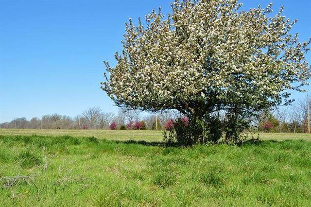 Lot 11 Pawnee Drive, Adrian, MO 64720 (#2337881) :: The Rucker Group