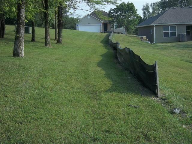 906 Highland Street, Pleasant Hill, MO 64080 (#2338421) :: Five-Star Homes