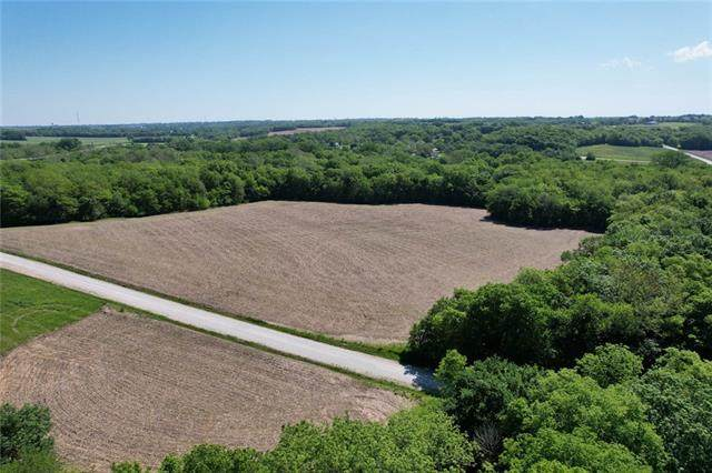 Lot 1 New Market Cemetery Road, Dearborn, MO 64439 (#2339862) :: Audra Heller and Associates