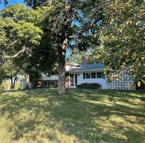 730 Chestnut Street, Mound City, KS 66056 (#2349310) :: The Shannon Lyon Group - ReeceNichols