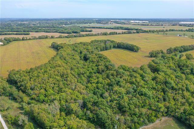155th And Holmes Road, Belton, MO 64012 (#2351194) :: Ask Cathy Marketing Group, LLC