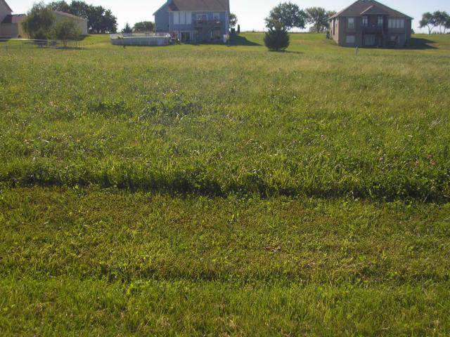 Lot # 64 Street, Cleveland, MO 64734 (#1904616) :: Jessup Homes Real Estate | RE/MAX Infinity