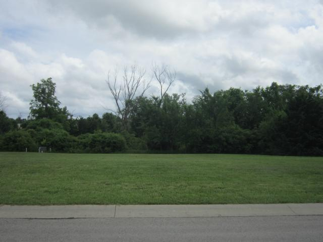 Hidden Meadows Drive, Paola, KS 66071 (#1944299) :: The Shannon Lyon Group - ReeceNichols