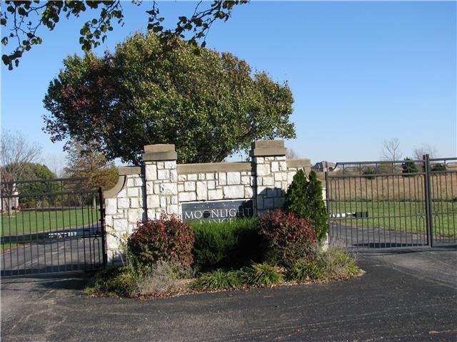 12020 Arbor View Lane, Olathe, KS 66061 (#2020471) :: Char MacCallum Real Estate Group