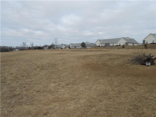 000000 Valley Spring Drive, Desoto, KS 66018 (#2028975) :: Eric Craig Real Estate Team