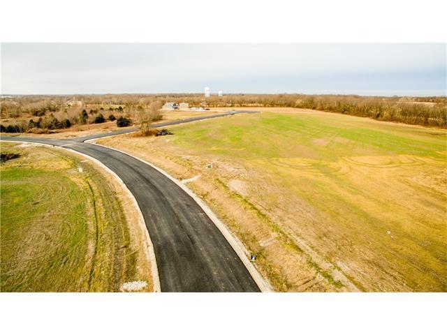 30407 Woodland Drive, Pleasant Hill, MO 64080 (#2083627) :: The Shannon Lyon Group - ReeceNichols