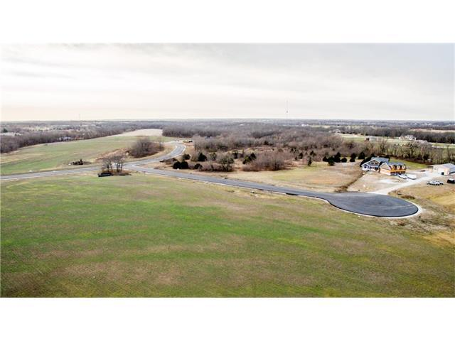 30303 Woodland Drive, Pleasant Hill, MO 64080 (#2083633) :: No Borders Real Estate