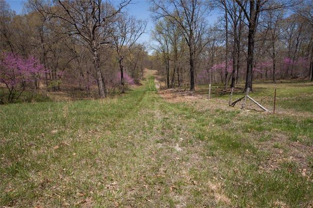 Mm Highway, Warsaw, MO 65355 (#2104376) :: The Shannon Lyon Group - ReeceNichols