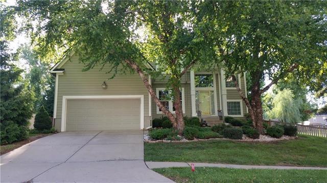 103 Broadmoor Drive, Louisburg, KS 66053 (#2130508) :: Kedish Realty Group at Keller Williams Realty