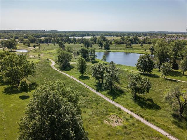 1520 Country Club Drive, Pleasant Hill, MO 64080 (#2168598) :: House of Couse Group