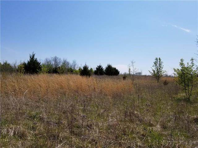 1454 NW 325th Road, Holden, MO 64040 (#2215607) :: The Shannon Lyon Group - ReeceNichols