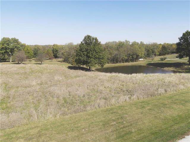 8618 NE 176th Street, Kearney, MO 64060 (#2309811) :: Audra Heller and Associates