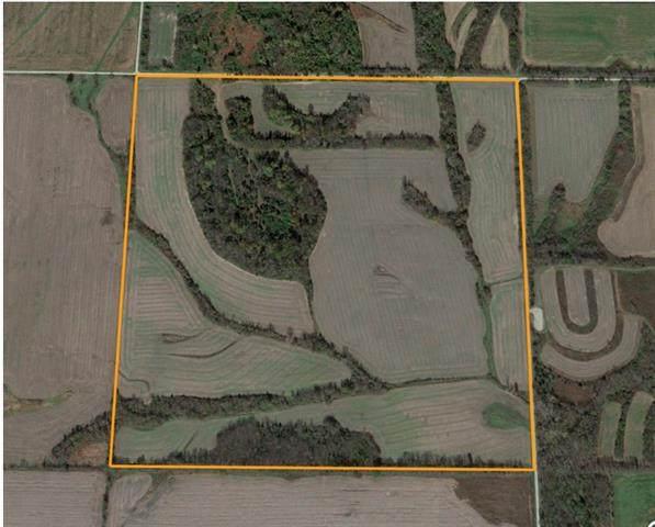 000 Sw 9508 Road, Rich Hill, MO 64779 (#2324075) :: Eric Craig Real Estate Team