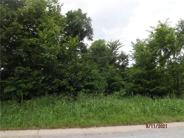 8342 Timber Trails Drive, De Soto, KS 66018 (#2324987) :: ReeceNichols Realtors
