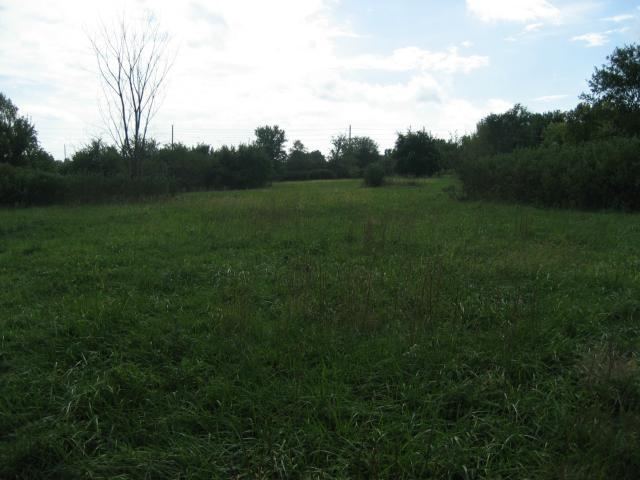 11408 E Summerskill Road, Peculiar, MO 64078 (#1501894) :: Edie Waters Network