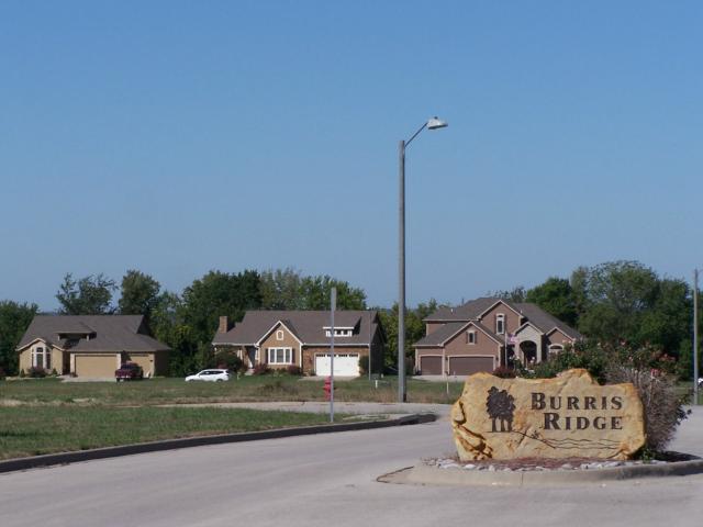 2313 Burris Drive, Harrisonville, MO 64701 (#1781554) :: No Borders Real Estate