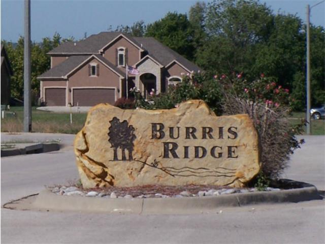 2110 Burris Drive, Harrisonville, MO 64701 (#1781577) :: House of Couse Group