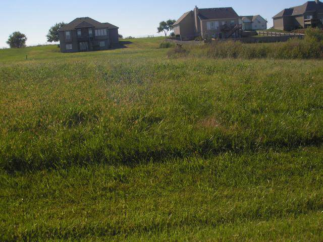 Lot 70 Trail Ridge Pass Street, Cleveland, MO 64734 (#1904620) :: Jessup Homes Real Estate | RE/MAX Infinity