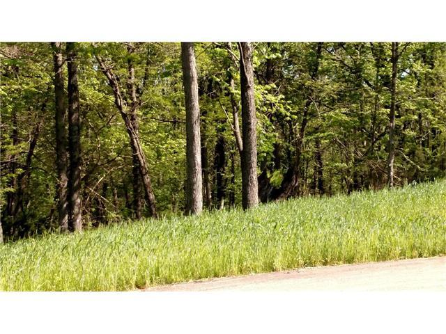 Lot #18 Smith's Mill Road, Smithville, MO 64089 (#2020664) :: Edie Waters Network