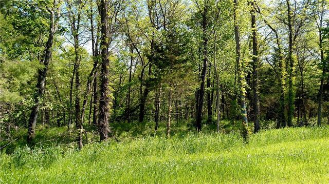 Lot #19 Smith's Mill Road, Smithville, MO 64089 (#2020666) :: Edie Waters Network