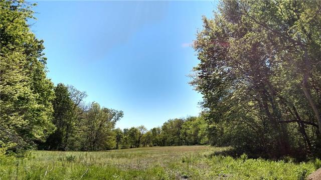 Lot 21 H&H Lake Road Highway, Smithville, MO 64089 (#2025936) :: Edie Waters Network