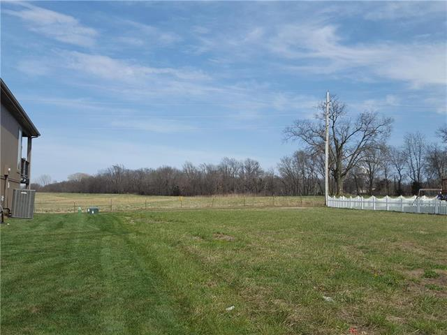 1007 SW Powell Drive, Oak Grove, MO 64075 (#2102268) :: The Shannon Lyon Group - ReeceNichols