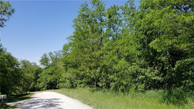 30 lot Meadow Lane, Lathrop, MO 64465 (#2108421) :: Edie Waters Network
