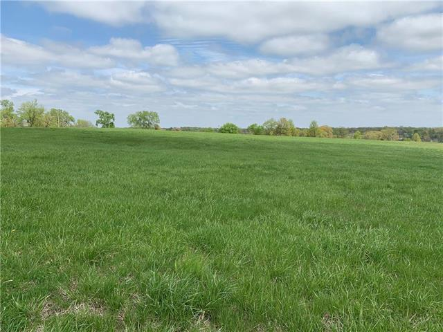 Lot 2691 Fox Road, Altamont, MO 64620 (#2160517) :: Team Real Estate