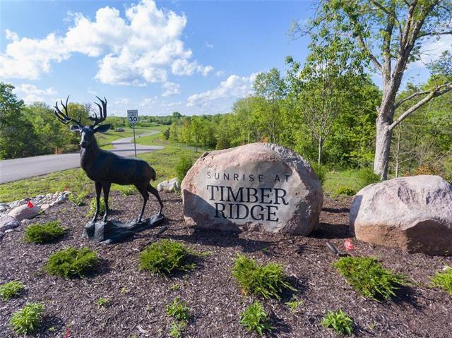 21411 Deer Ridge Drive, Spring Hill, KS 66083 (#2163322) :: The Gunselman Team
