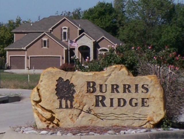 2314 Burris Drive, Harrisonville, MO 64701 (#1781548) :: Edie Waters Network