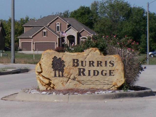1501 Hunter Drive, Harrisonville, MO 64701 (#1781550) :: Edie Waters Network