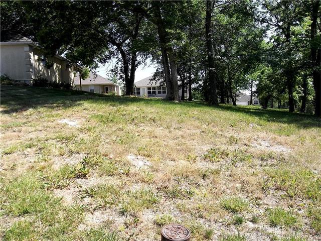 910 Highland Street, Pleasant Hill, MO 64080 (#1802398) :: Eric Craig Real Estate Team