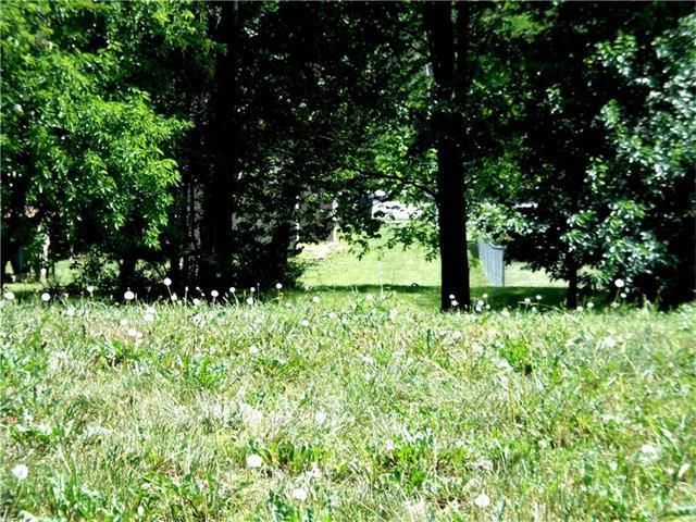 1000 ingleside Drive, Pleasant Hill, MO 64080 (#1802421) :: Eric Craig Real Estate Team