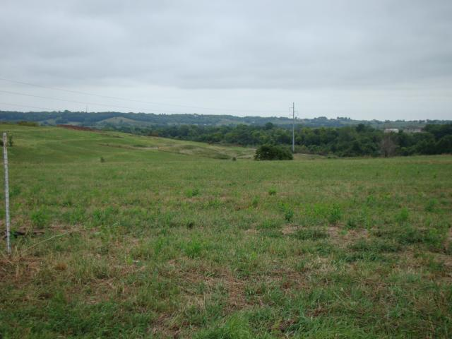 Lot 5 Greenton Road, Odessa, MO 64076 (#1851657) :: House of Couse Group