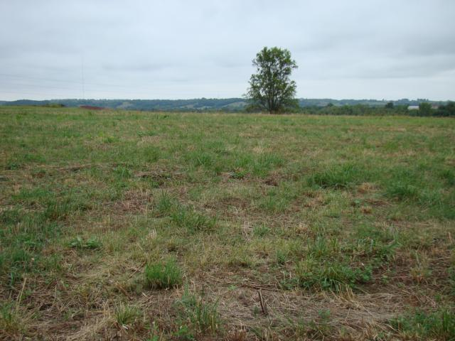 Lot 6 Greenton Road, Odessa, MO 64076 (#1851659) :: House of Couse Group
