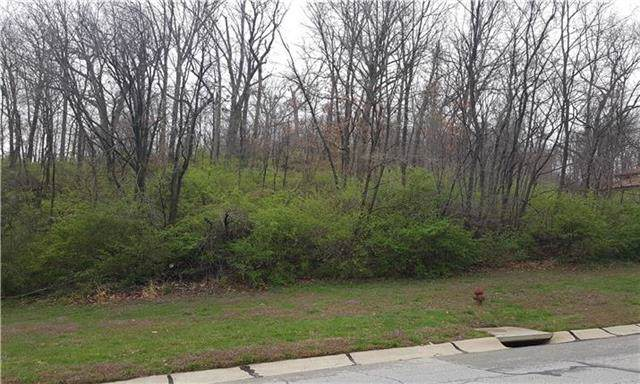 Lot 1 N Riverchase Lane, Parkville, MO 64151 (#1982126) :: Ron Henderson & Associates