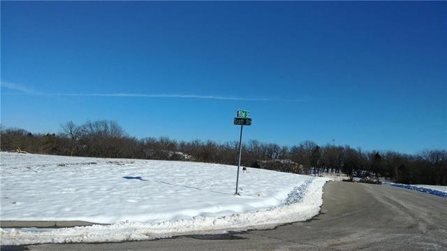 9241 Scott Drive, Desoto, KS 66018 (#2090136) :: No Borders Real Estate