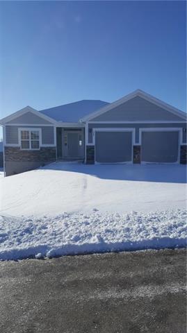 307 Fairview Circle, Platte City, MO 64079 (#2117908) :: No Borders Real Estate