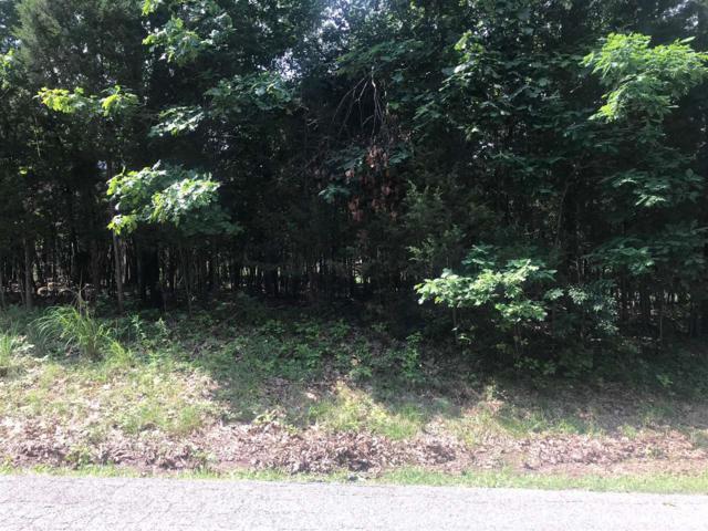 790 Dandelion Lane, BRANDENBURG, KY 40108 (#10048351) :: Keller Williams Louisville East