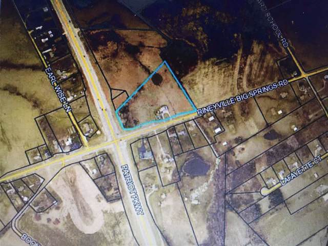 1164 Rineyville Big Springs Road, RINEYVILLE, KY 40162 (#10050408) :: Team Panella