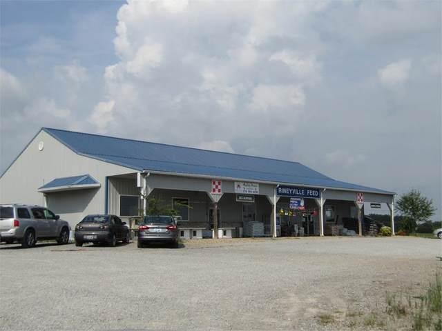 7483 Rineyville Road, RINEYVILLE, KY 40162 (#10051453) :: Team Panella