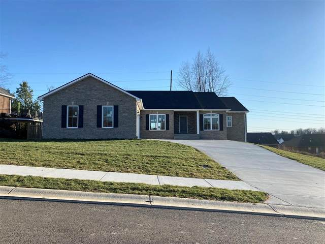 509 Freeman Lake Road, ELIZABETHTOWN, KY 42701 (#10051626) :: The Price Group