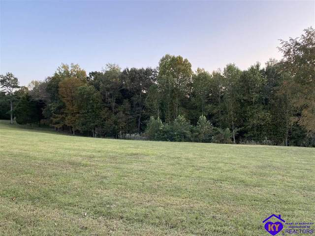 0 Phelps Johnson Road, LEITCHFIELD, KY 42754 (#10054178) :: Team Panella