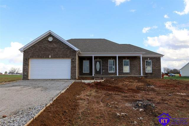 175 Sunflower Drive, RINEYVILLE, KY 40162 (#10054588) :: Impact Homes Group