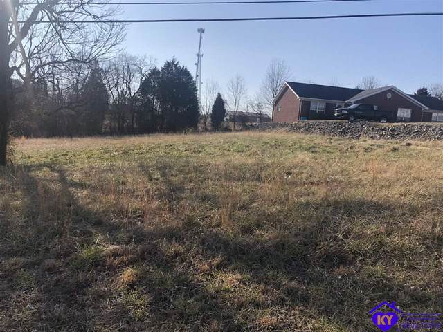 184 School Side Drive, BRANDENBURG, KY 40108 (#10055089) :: Team Panella