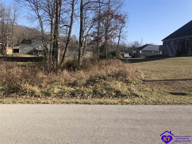 114 Tissy Lane, BRANDENBURG, KY 40108 (#10055123) :: Team Panella