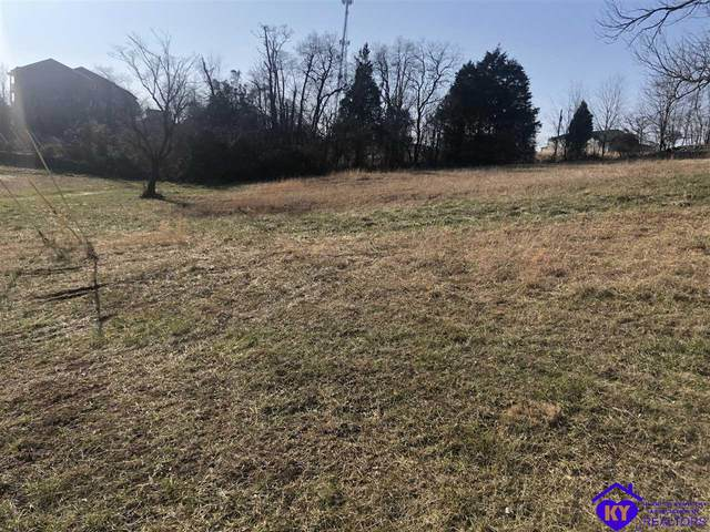 196 School Side Drive, BRANDENBURG, KY 40108 (#10055126) :: Team Panella