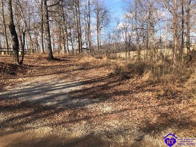 20 Mustang Lane, RINEYVILLE, KY 40162 (#10055151) :: Team Panella