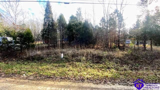 55 Pine Ridge Lane, HARDINSBURG, KY 40143 (#10055801) :: Team Panella