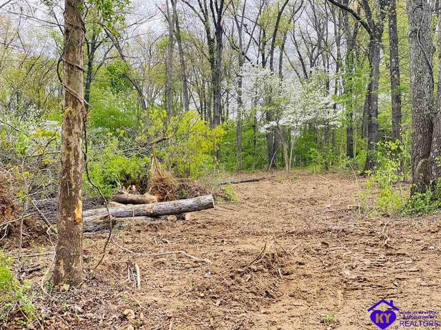 Lot 36 Devonshire Court, GLENDALE, KY 42740 (#10056244) :: Team Panella